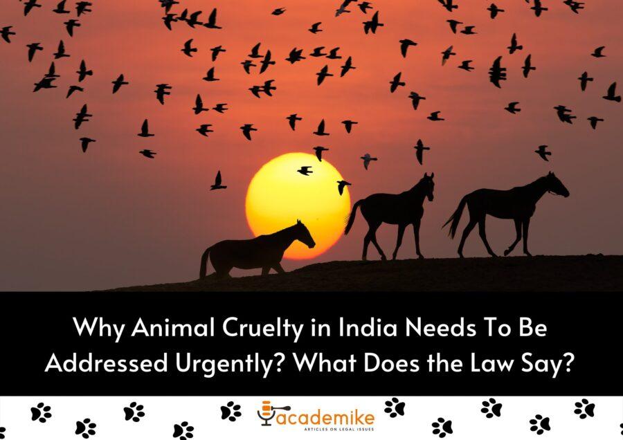 animal cruelty in India