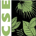 center for science and environment internship, cse delhi, ngo internship, environment law