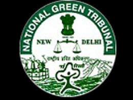 Internship National Green Tribunal Delhi