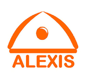 Virtual Internship @ Alexis Insights: A  brilliant <b>work from home</b> experience