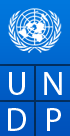 UNDP Fellowship 2015