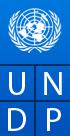 UNDP Fellowship 2015