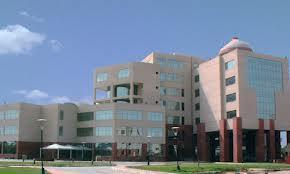internship field investigator delhi judicial academy
