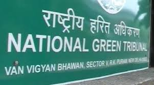 Internship Experience @ National Green Tribunal, Delhi: Learning Basics of Filing and E-filing Cases from Scratch
