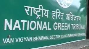 Internship Experience @ National Green Tribunal, New Delhi