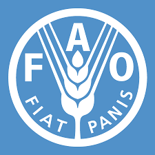 Internship Opportunity: UN Food and Agriculture Organisation