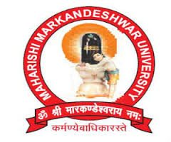 Maharishi Markandeshwar University Model PArliament 2019