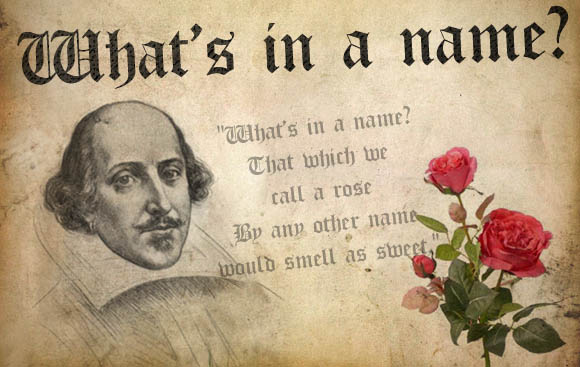 """Letter to Shakespeare by a Law Student 