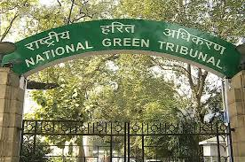 internship experience National Green Tribunal Bhopal