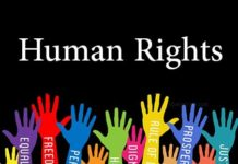 Internship TN State Human rights commission