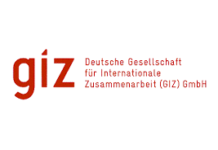 GIZ internship germany