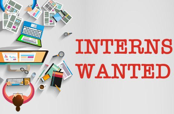Internship Webdorm Delhi