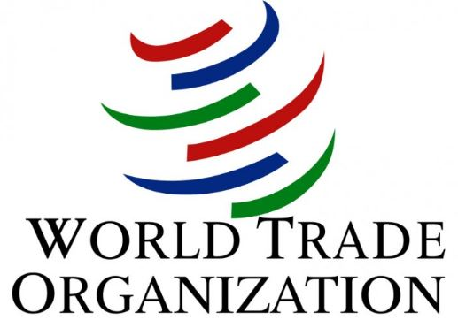 WTO Switzerland Young Professionals Programme 2019