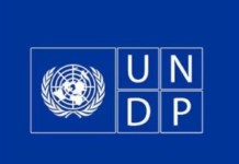 UNDP youth Parliament internship
