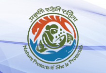 internship ministry of environment forest climate change