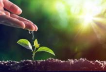 Green Revolution Certificate Program