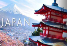 METI Japan Government Internship programme