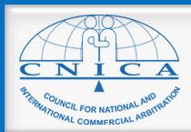 CNICA internship experience chennai
