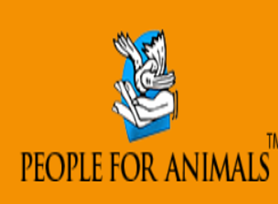 Litigation job People for Animals Delhi