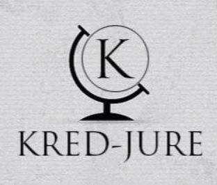 internship experience Kred Jure Consultants Delhi
