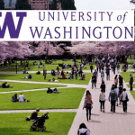 University of Washington online english course