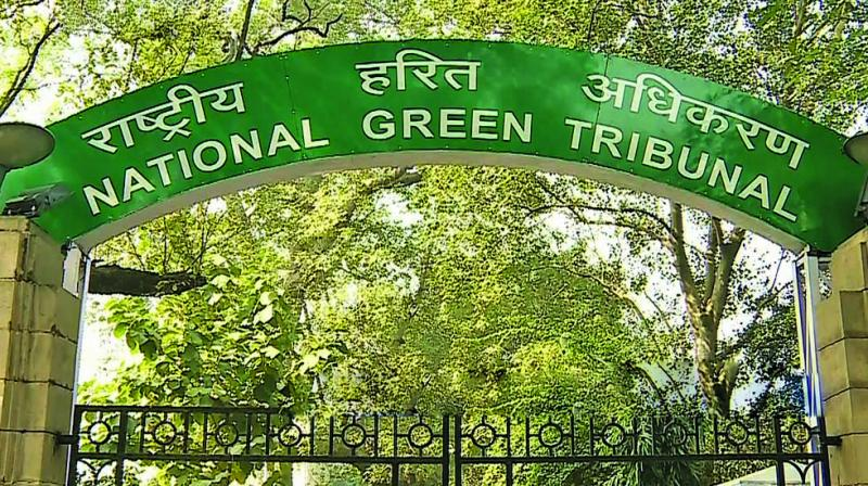 Internship Experience @ National Green Tribunal, Delhi: Case File Research Work, Attend Court Proceedings