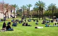 tel aviv university llm