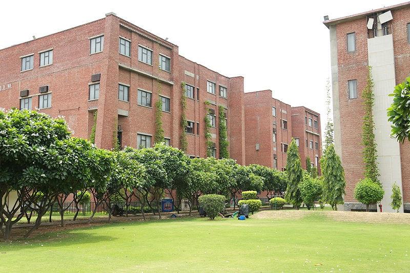 iilm university llm program