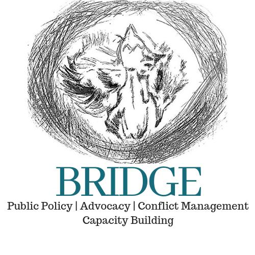 Bridge Policy Think Tank, New Delhi