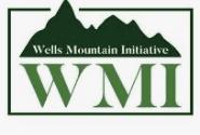 WMI Scholars Program 2021