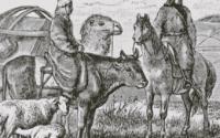 webinar on nomadic semi nomadic communities by ggsipu delhi