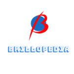 Brillopedia Journal