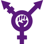 workshop on transfeminst perspectives from india sambhaavna institute