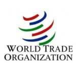 young professional job post wto delhi