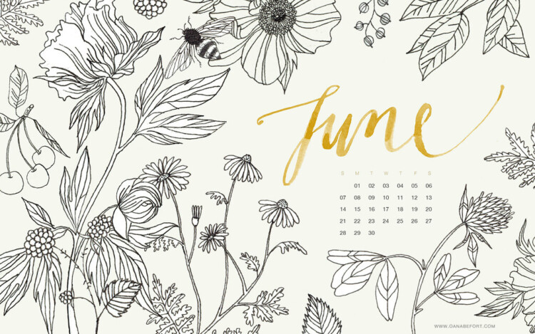 june calendar lawctopus important deadlines and opportunities