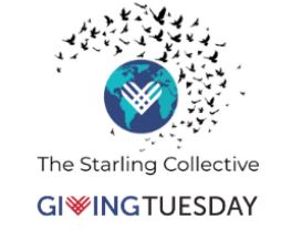 giving tuesday's starling collective 2021 cohort for grassroots leaders