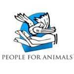 Internship Opportunity at People for Animals: Applications Open